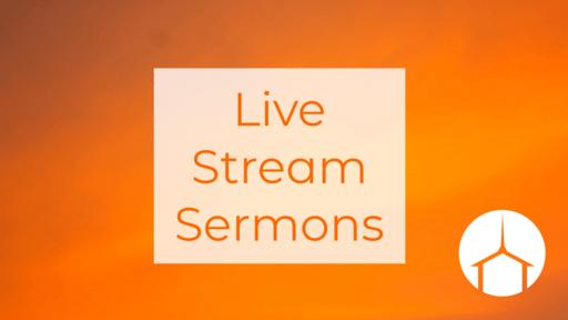 Live Stream-TEST