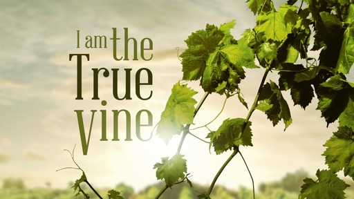 I am the True Vine... Abide in Me
