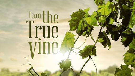 I am the True Vine... Abide in Me