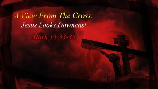 The View From the Cross