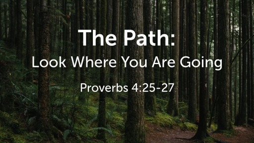The Path: Look Where You Are Going