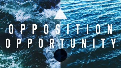 Opposition and Opportunity