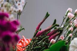 Florals 202 image