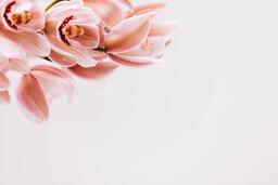Florals 95 image