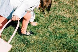 Egg Hunt 5 image