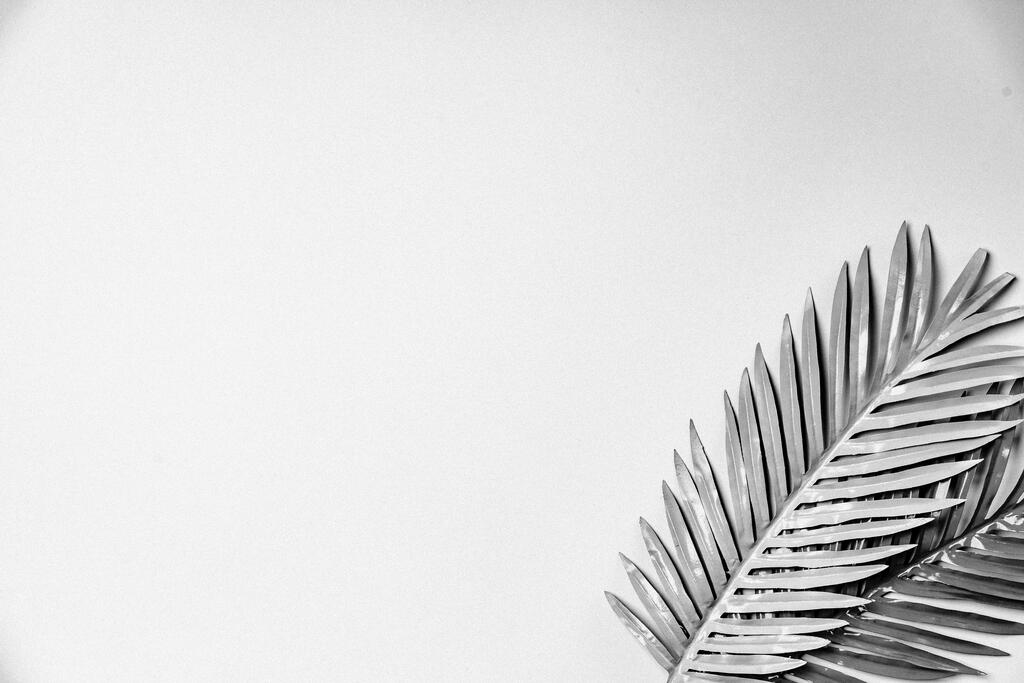 Palm Leaves large preview