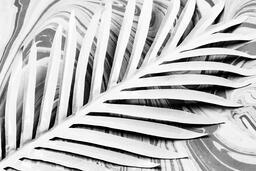 Palm Leaf on Marbled Background  image 2