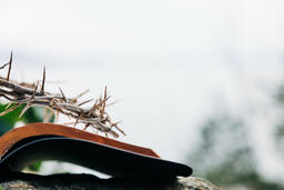 The Crown of Thorns Sitting on an Open Bible  image 2