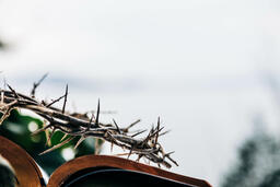 The Crown of Thorns Sitting on an Open Bible  image 1
