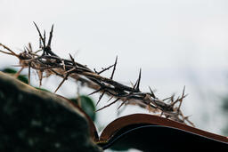 The Crown of Thorns Sitting on an Open Bible  image 3