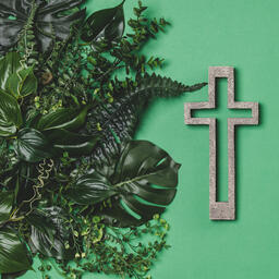 Green Foliage with a Concrete Cross Outline  image 3