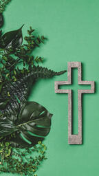 Green Foliage with a Concrete Cross Outline  image 2
