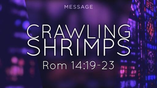 Crawling Shrimps