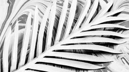 Palm Leaf on Marbled Background  image 6