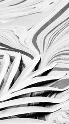 Palm Leaf on Marbled Background  image 5