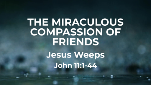 Mar 29 - The Miraculous Compassion of Friends