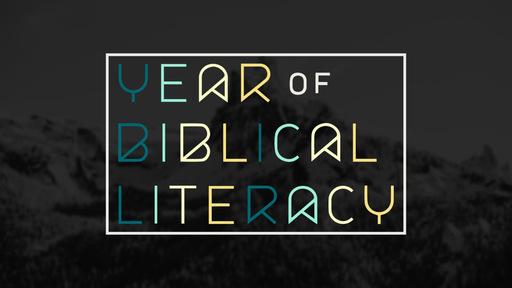 Year Of Biblical Literacy