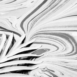 Palm Leaf on Marbled Background  image 9