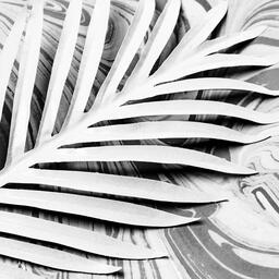 Palm Leaf on Marbled Background  image 4