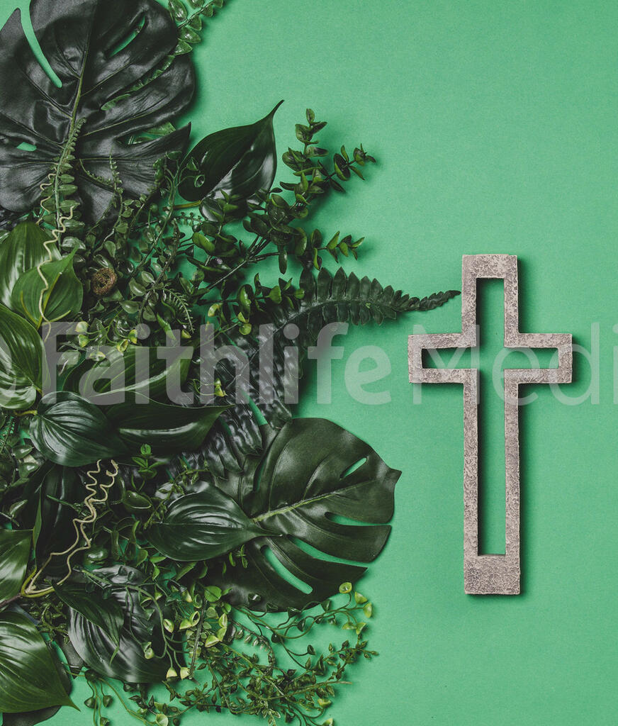 Green Foliage with a Concrete Cross Outline large preview