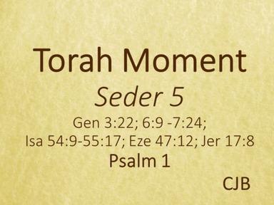200404 - Seder 5 - Psalm 1