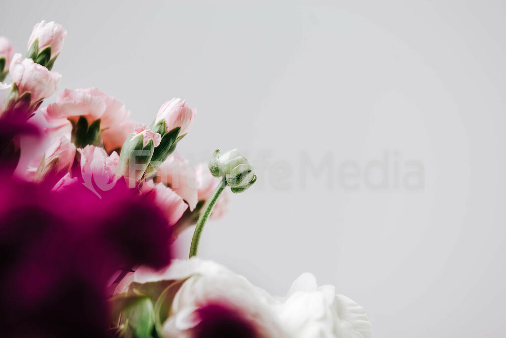Florals 205 preview