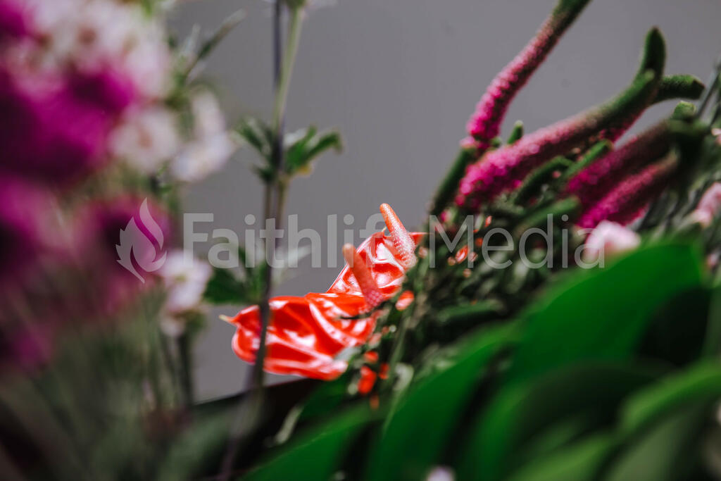 Pink Tropical Floral Arrangement large preview