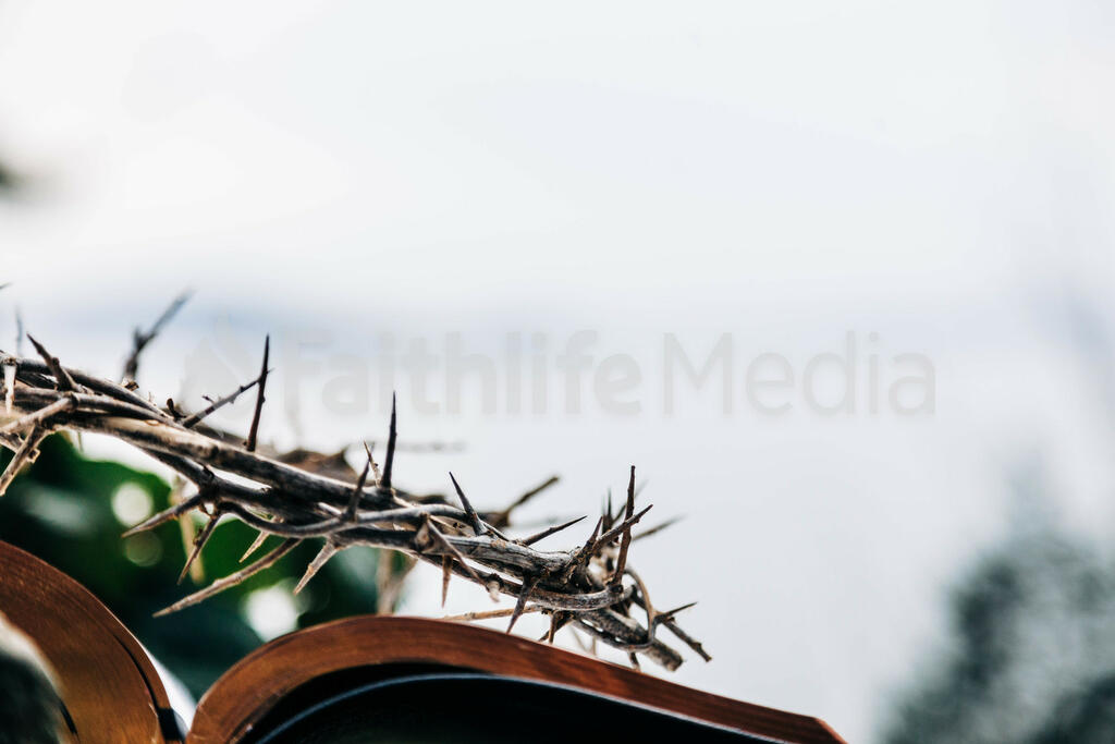 The Crown of Thorns Sitting on an Open Bible large preview