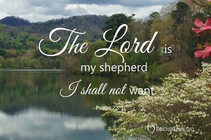 God's Cure For Troubled Times Part 1 Psalm 23:1