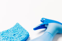 Blue Spray Bottle and Sponge  image 3