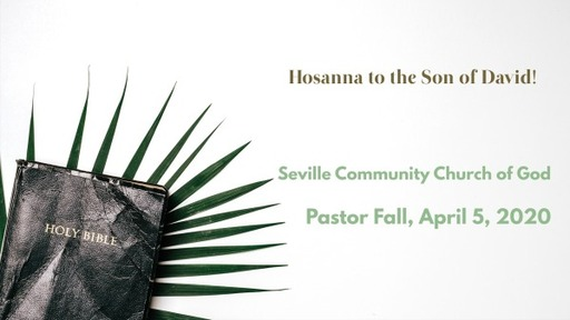 Hosanna to the Son of David!