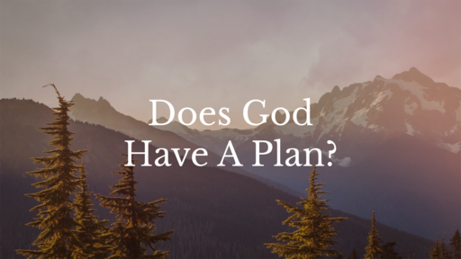 Does God Have A Plan?