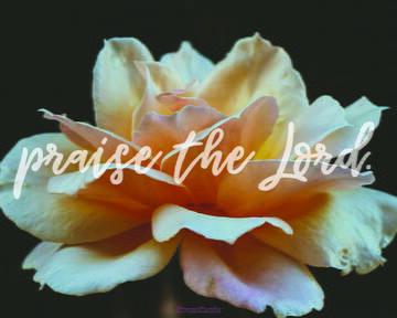 PRAISING THE LORD