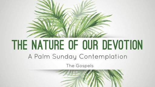 The Nature of Our Devotion - A Palm Sunday Contemplation