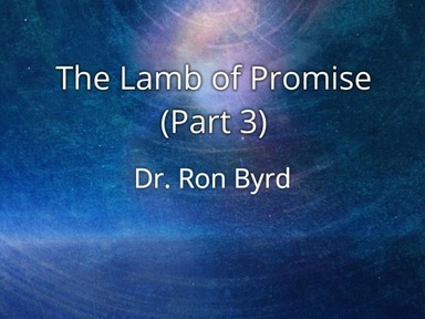 The Lamb of Promise (Part 3)