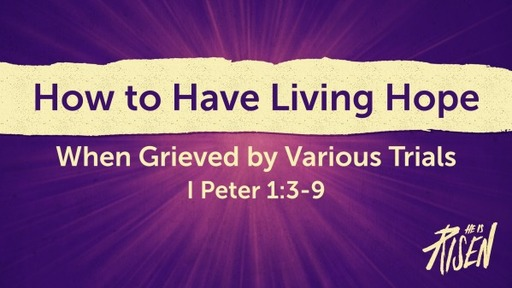 How to Have Living Hope When Grieved by Various Trials