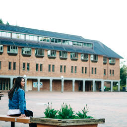 Student Sitting in an Empty College Campus  image 2