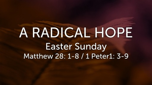 Sunday 04-12-20
