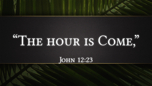 2020-04-05 PM (PI) - Palm Sunday: The Hour is Come (John 12:23)