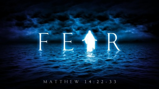 Fear: Facing the Storm