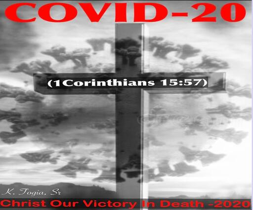COVID-20 P.U.S.H.