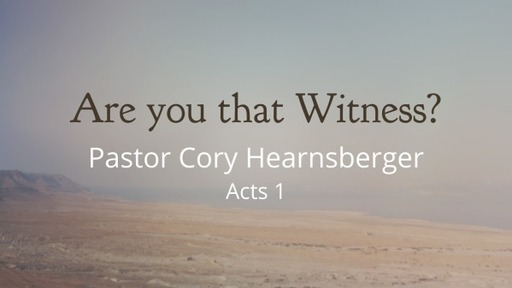 Are You that Witness?