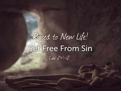 Raised to New Life! Set Free From Sin