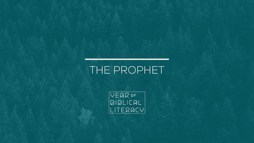 The Prophet — The Pain & Anger of God