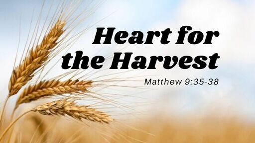 Heart For The Harvest