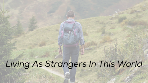Living As Strangers In This World