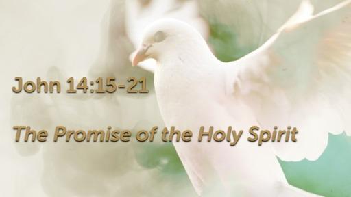 Virtual Worship Sun, May 17th
