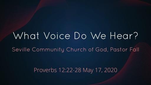 What Voice Do We Hear?