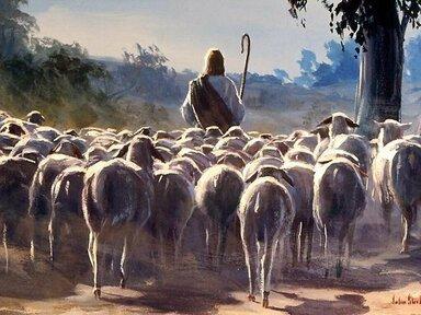 My Shepherd, A Study in PSA 23
