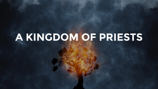A Kingdom of Priests